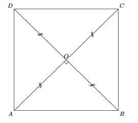 quadri8.jpg